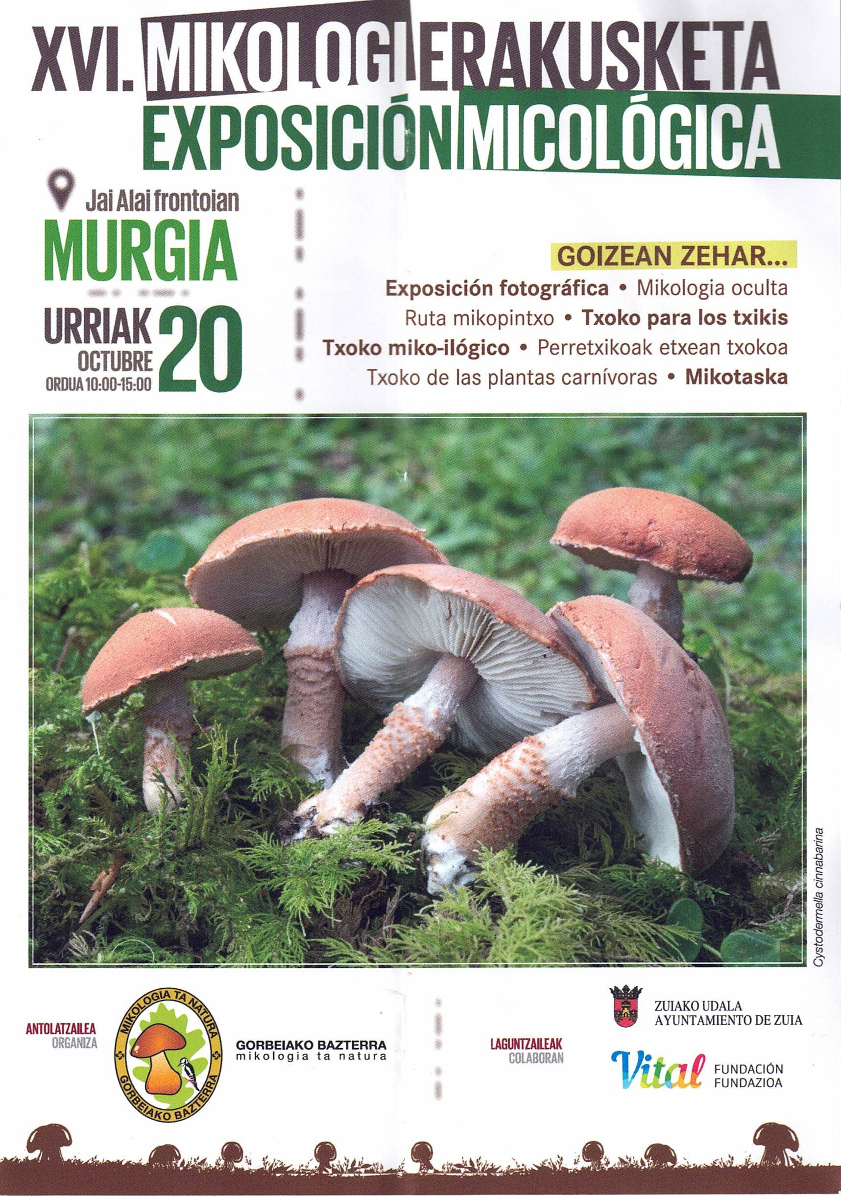 Domingo 20-oct-2019: Exposición Micológica en Murgia